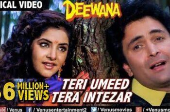 Teri Umeed Tera Intezar Mp3 Song Download