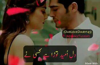 Dil E Umeed Tora Hai Kisi Ne Mp3 Song Download